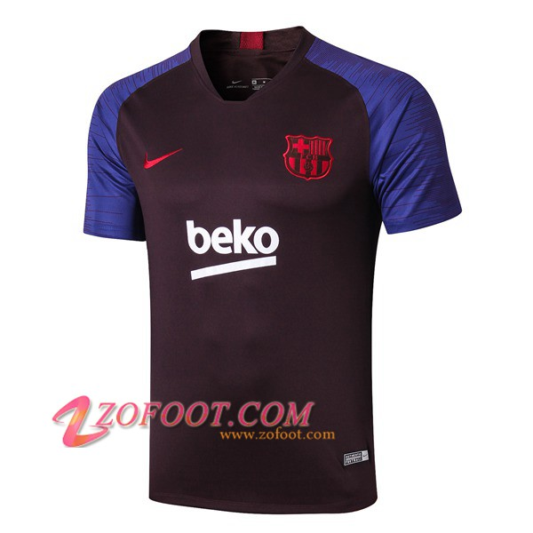 Training T-Shirts FC Barcelone Pourpre 2019/2020
